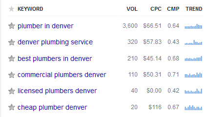 Overall keyword with volumes for Denver Plumbers