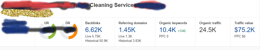 SEO Traffic value for cleaning